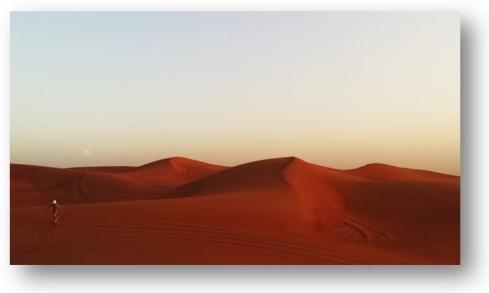 desert_aristotle