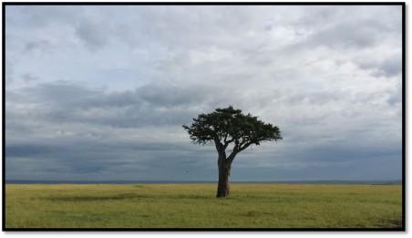 monet_landscape2
