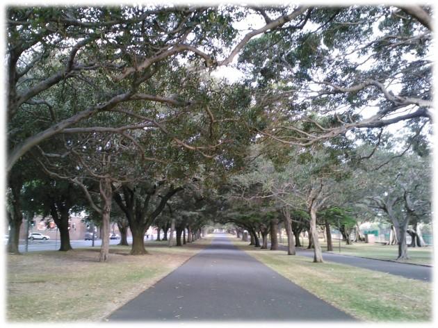straight_path