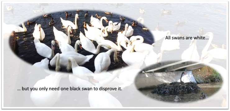 all-swans-are-white-(with background)