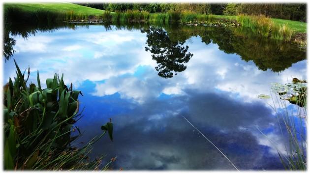 sky_in_the_pond