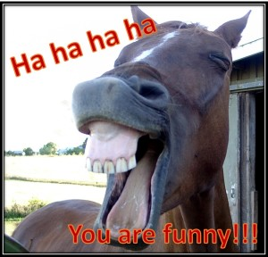 laughing_horse_frame