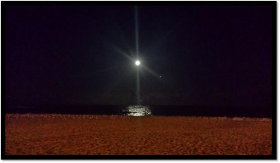 shining_moon