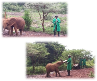 crista_kenya_day8-9_pic3
