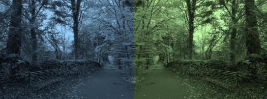 bluegreenpark